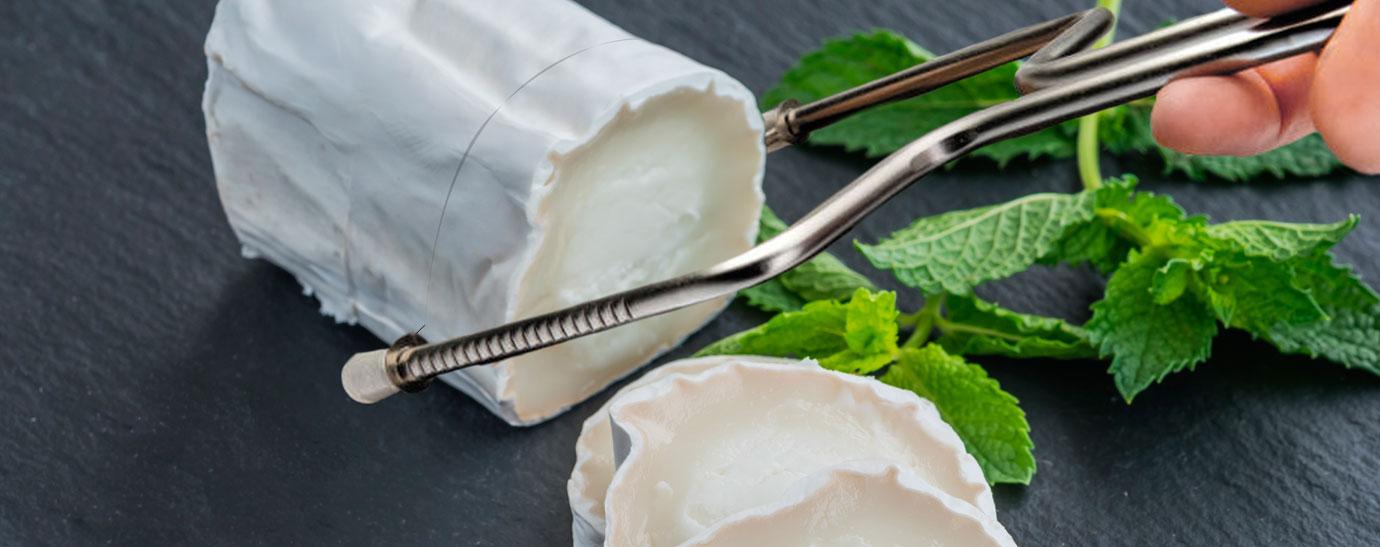 Cuchillo Lira para queso